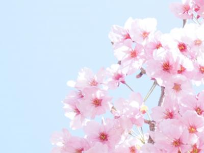4月の聖句